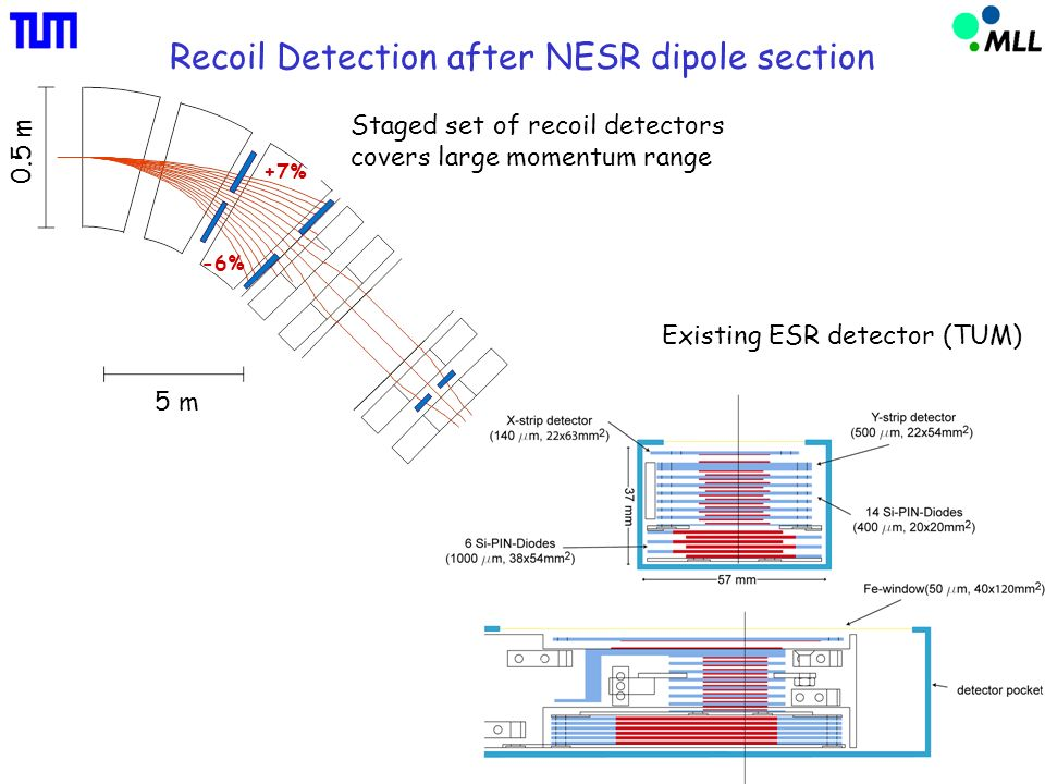 Recoil Detection after NESR dipole section Existing ESR detector (TUM) 5 m 0.5 m +7% -6% Staged set of recoil detectors covers large momentum range