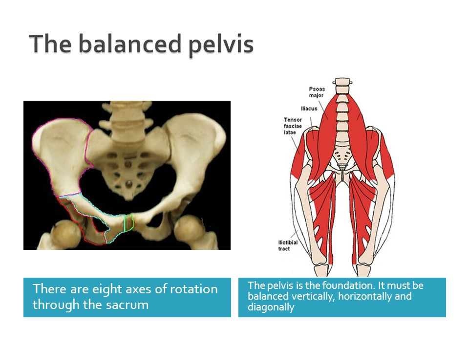 There are eight axes of rotation through the sacrum The pelvis is the foundation. It must be balanced vertically, horizontally and diagonally