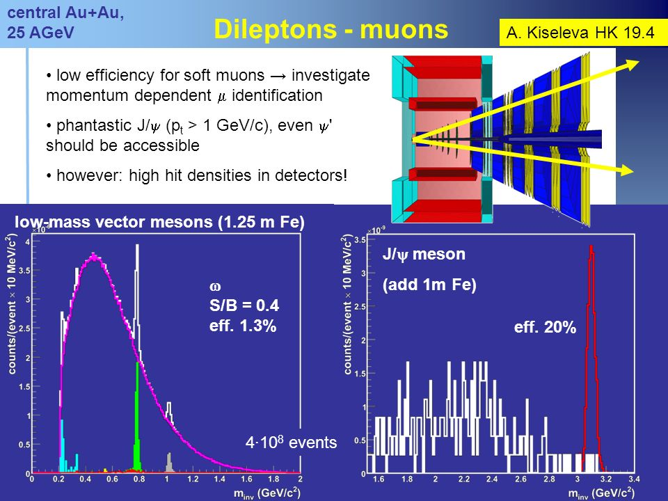 Claudia Höhne DPG Frühjahrstagung, Gießen, März 200712 Dileptons - muons low efficiency for soft muons investigate momentum dependent identification phantastic J/ (p t > 1 GeV/c), even should be accessible however: high hit densities in detectors.