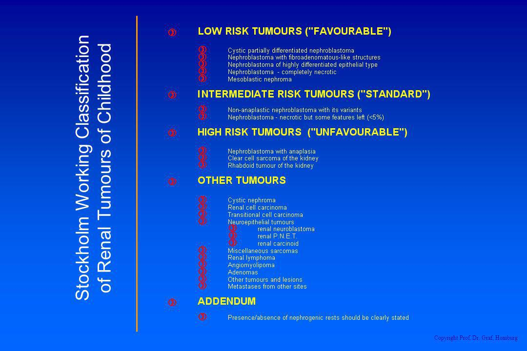 Stockholm Working Classification of Renal Tumours of Childhood Copyright Prof. Dr. Graf, Homburg