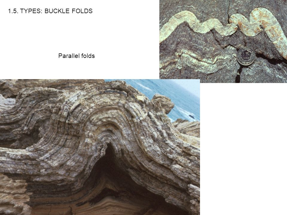 Parallel folds 1.5. TYPES: BUCKLE FOLDS