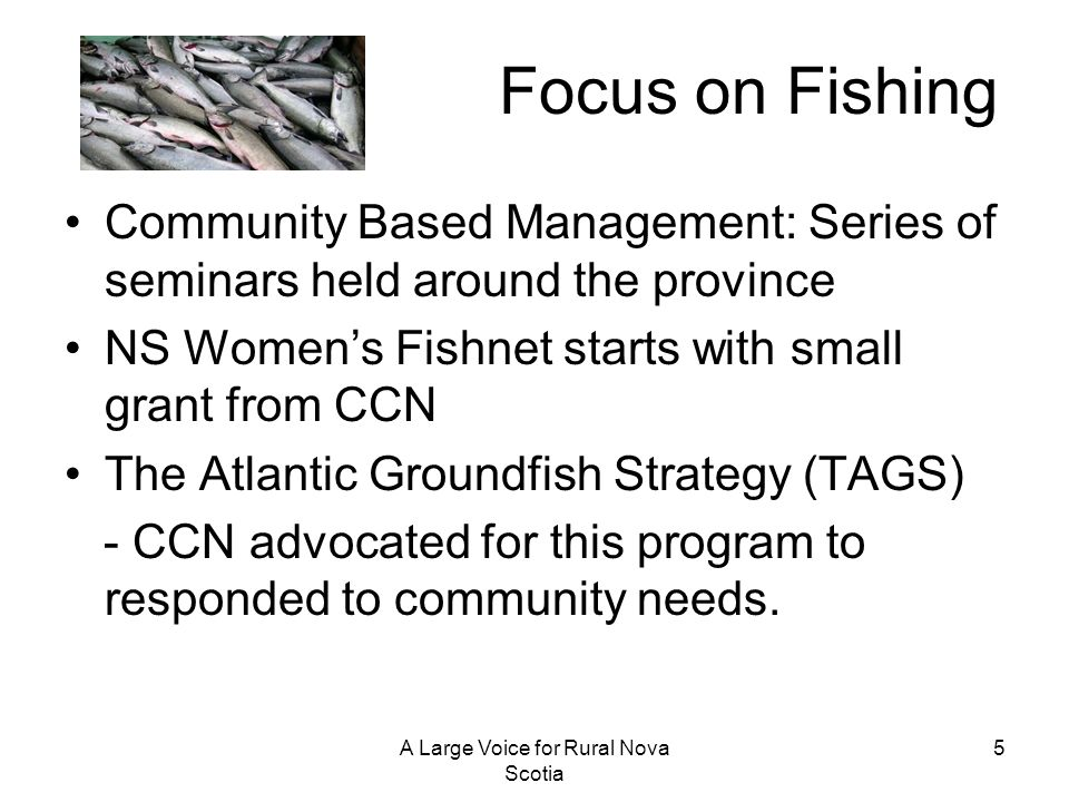 A Large Voice for Rural Nova Scotia 5 Focus on Fishing Community Based Management: Series of seminars held around the province NS Womens Fishnet start
