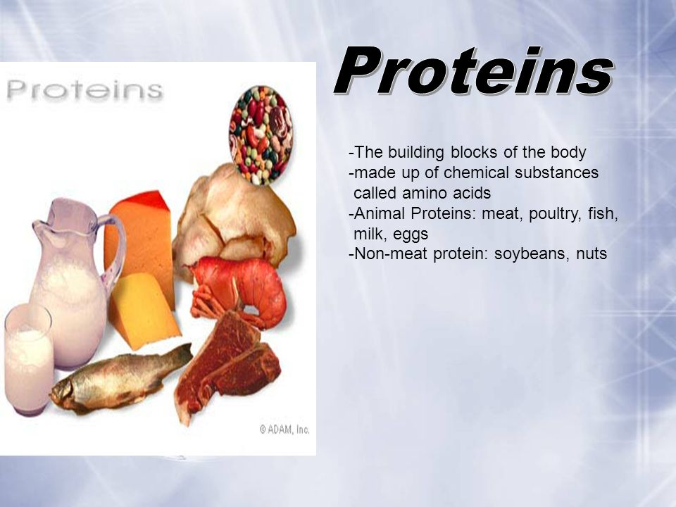 -The building blocks of the body -made up of chemical substances called amino acids -Animal Proteins: meat, poultry, fish, milk, eggs -Non-meat protei