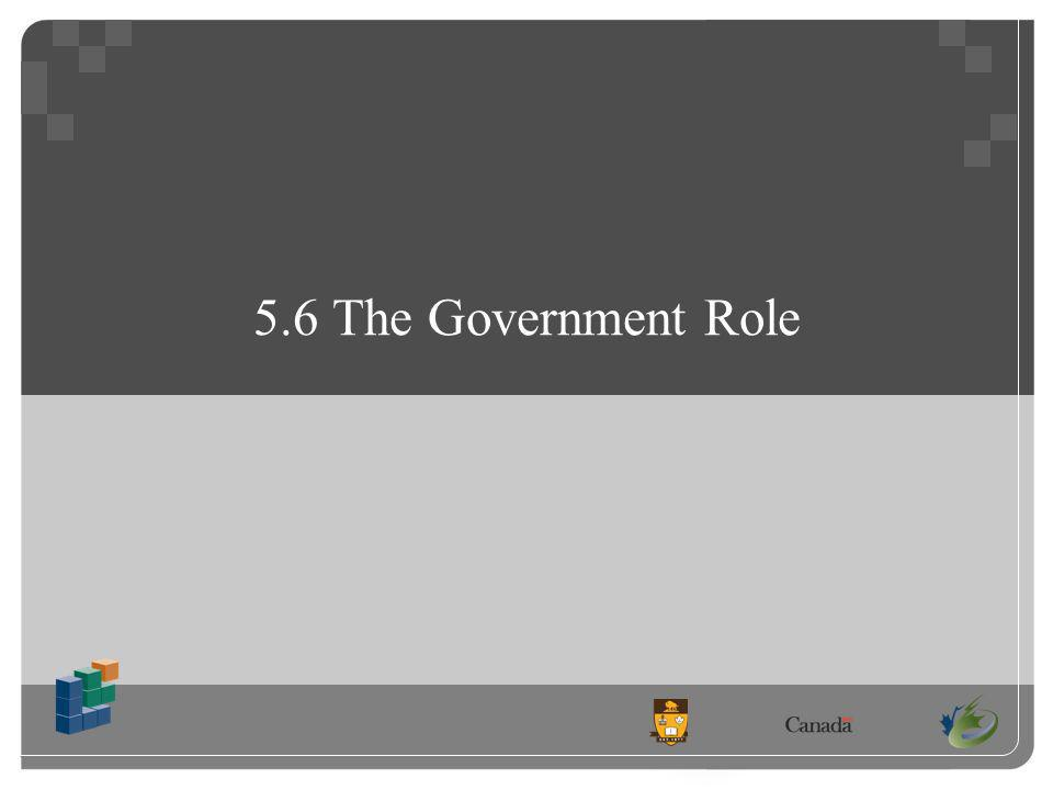 5.6 The Government Role