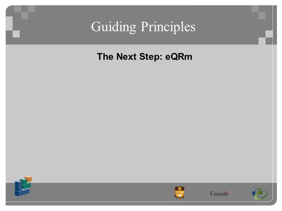 Guiding Principles The Next Step: eQRm