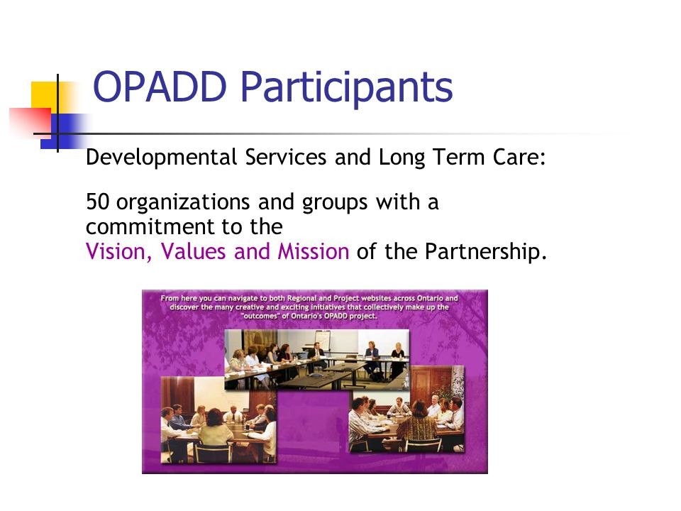 OPADD Participants Developmental Services and Long Term Care: 50 organizations and groups with a commitment to the Vision, Values and Mission of the Partnership.