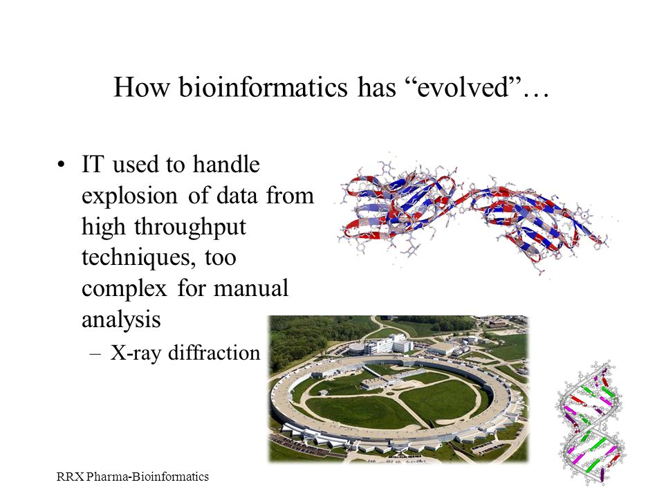 RRX Pharma-Bioinformatics How bioinformatics has evolved… IT used to handle explosion of data from high throughput techniques, too complex for manual