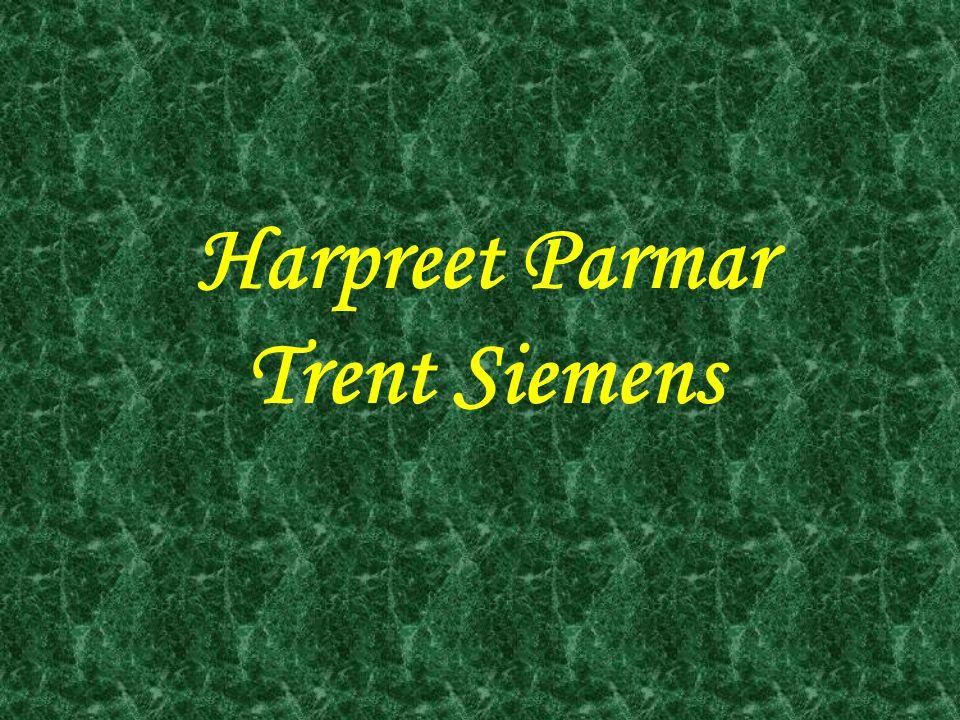 TOP GRADE 9 ATHLETES MALEFEMALE Trent Siemens Kamalpreet Parhar