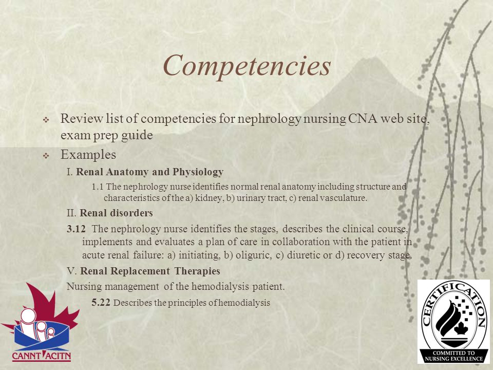Competencies Review list of competencies for nephrology nursing CNA web site, exam prep guide Examples I. Renal Anatomy and Physiology 1.1 The nephrol