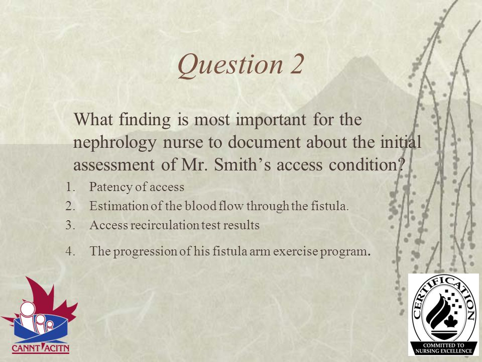 Question 2 What finding is most important for the nephrology nurse to document about the initial assessment of Mr. Smiths access condition? 1.Patency
