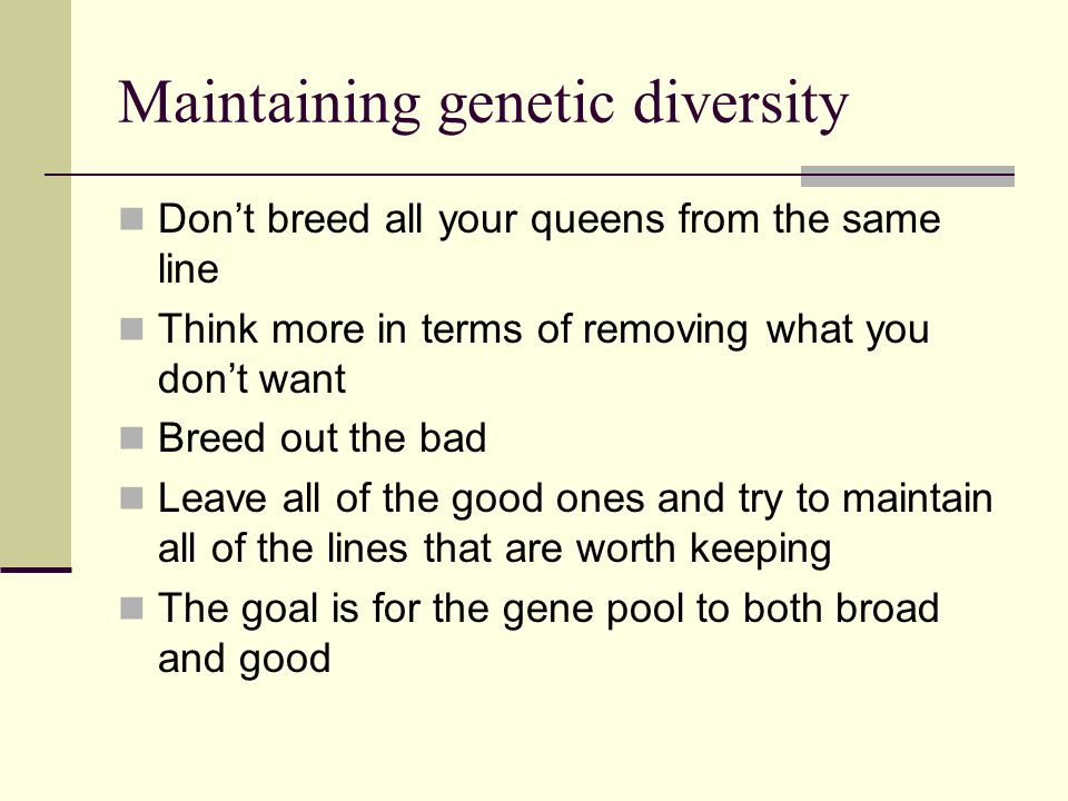 Maintaining genetic diversity Dont breed all your queens from the same line Think more in terms of removing what you dont want Breed out the bad Leave all of the good ones and try to maintain all of the lines that are worth keeping The goal is for the gene pool to both broad and good
