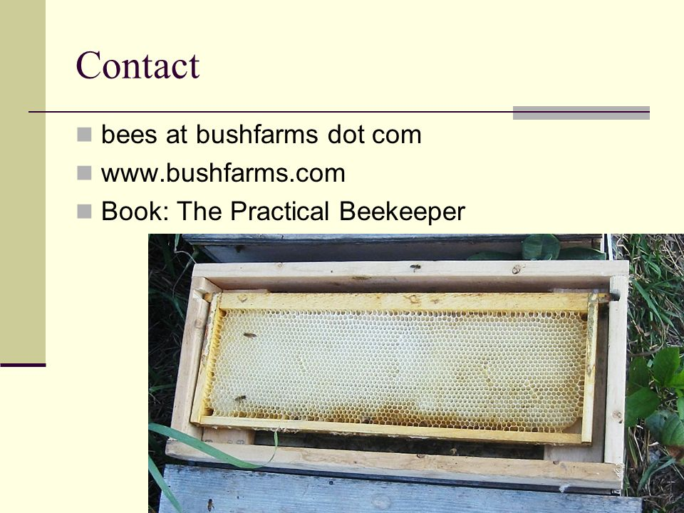Contact bees at bushfarms dot com www.bushfarms.com Book: The Practical Beekeeper