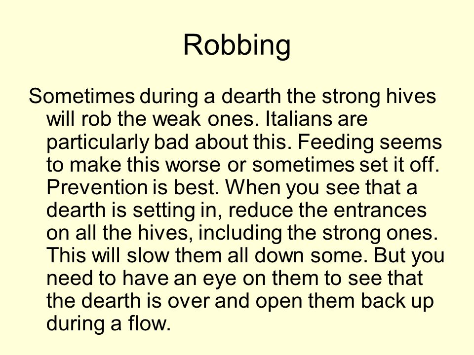 Robbing Sometimes during a dearth the strong hives will rob the weak ones. Italians are particularly bad about this. Feeding seems to make this worse