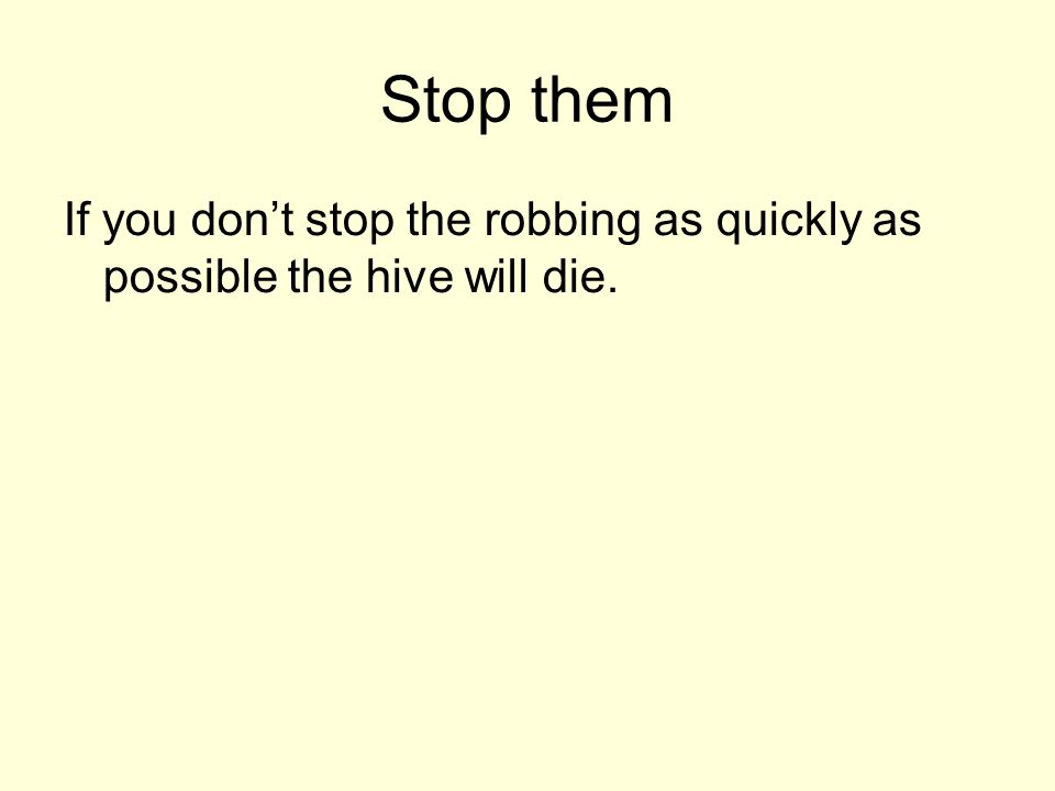 Stop them If you dont stop the robbing as quickly as possible the hive will die.