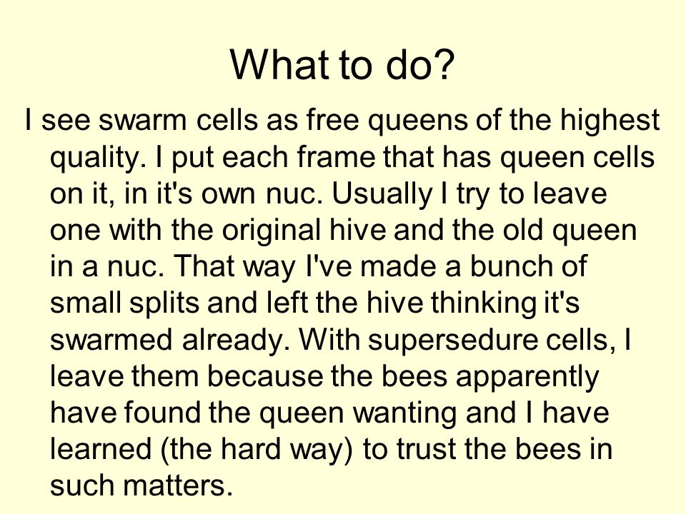 What to do? I see swarm cells as free queens of the highest quality. I put each frame that has queen cells on it, in it's own nuc. Usually I try to le