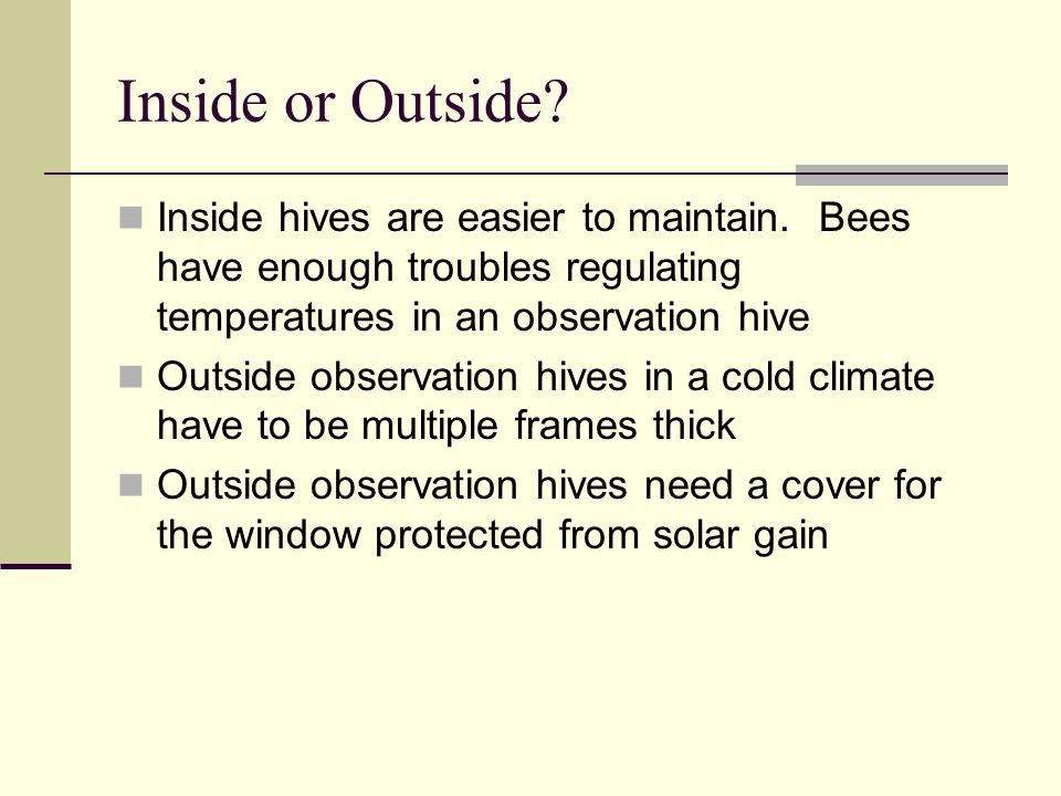 Inside or Outside. Inside hives are easier to maintain.