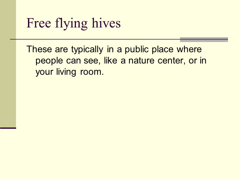 Free flying hives These are typically in a public place where people can see, like a nature center, or in your living room.