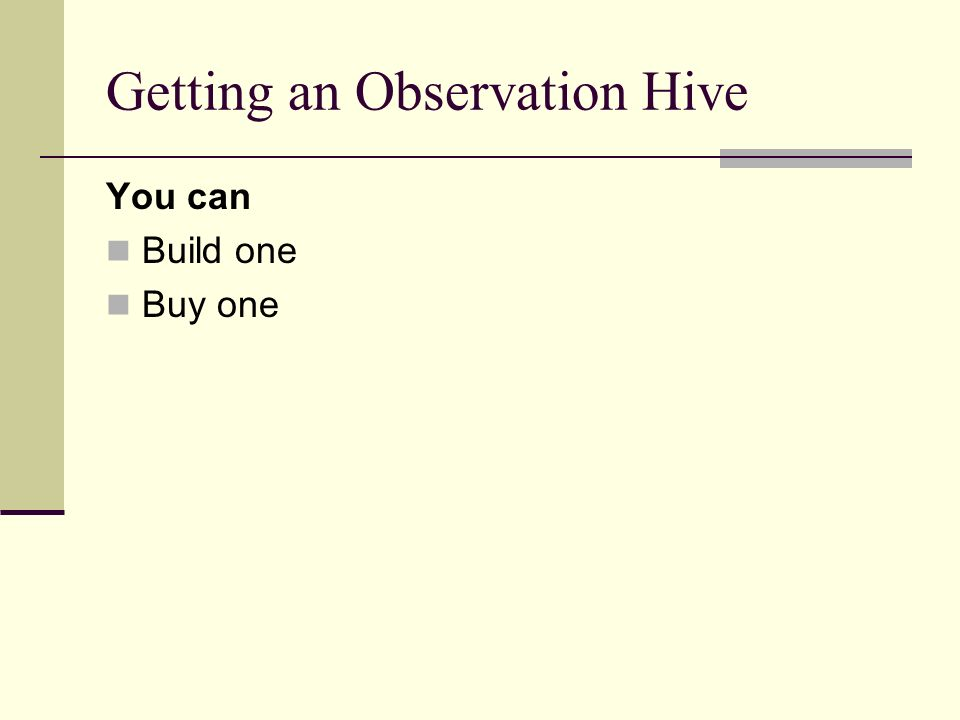 Getting an Observation Hive You can Build one Buy one