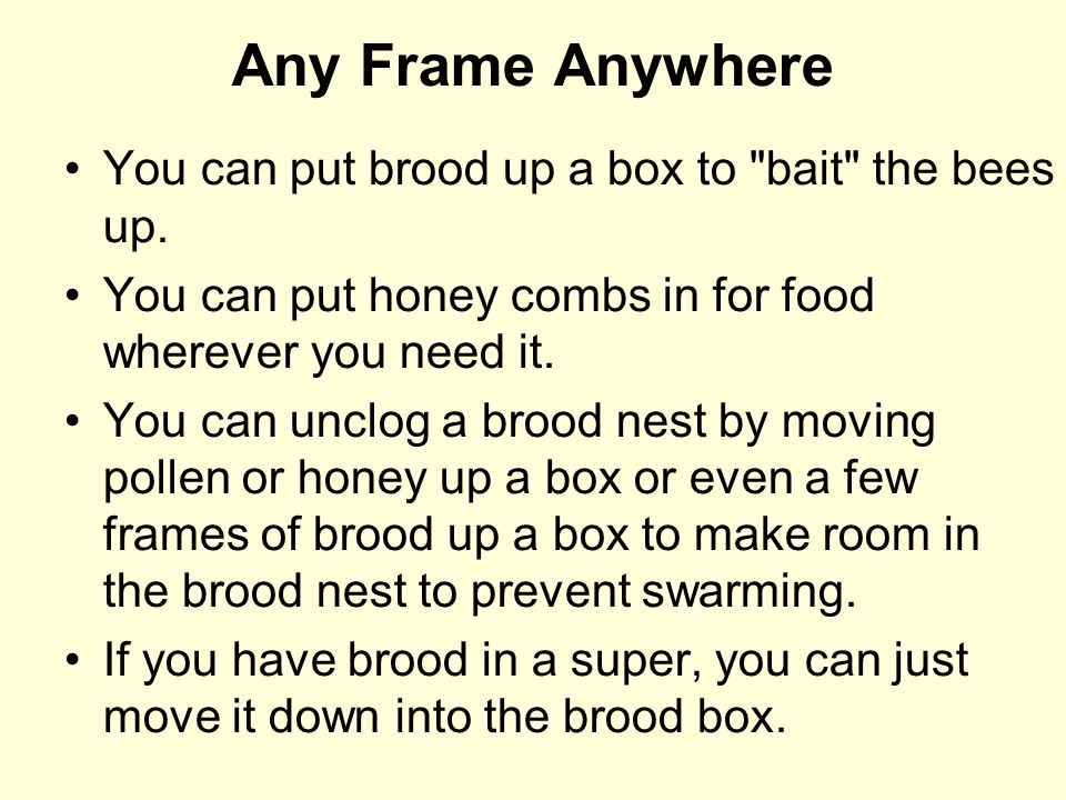 Any Frame Anywhere You can put brood up a box to