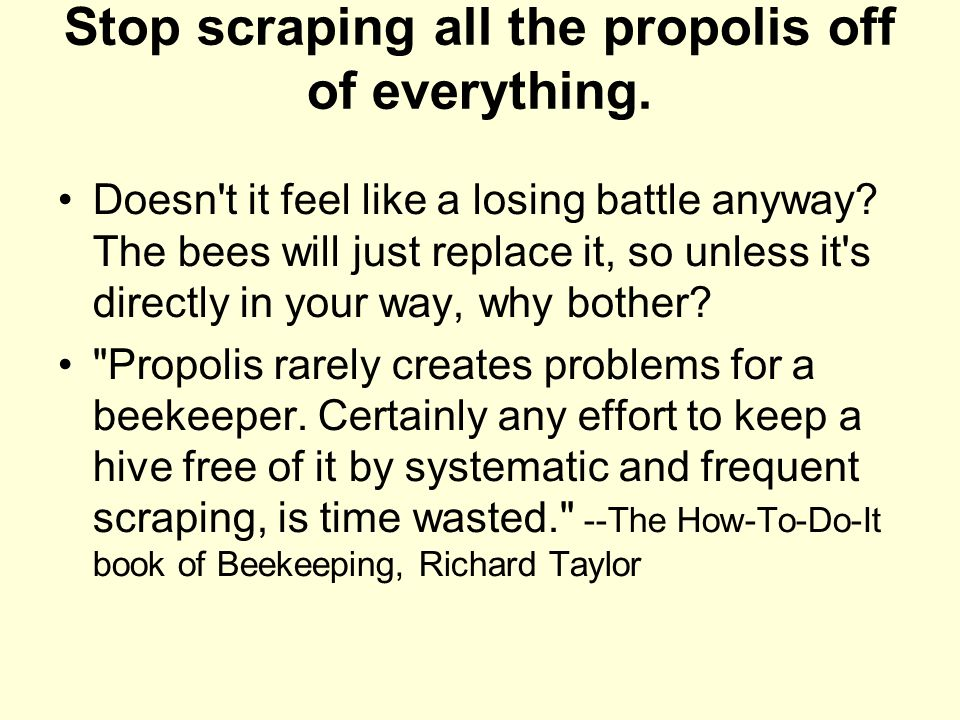 Stop scraping all the propolis off of everything. Doesn't it feel like a losing battle anyway? The bees will just replace it, so unless it's directly