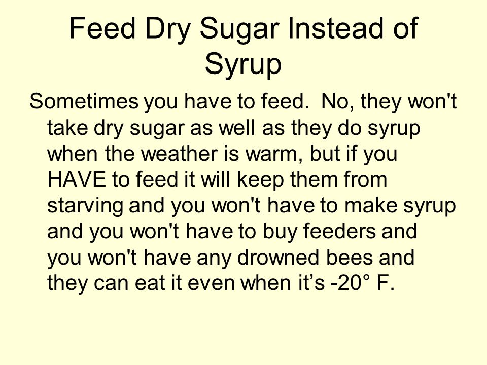 Feed Dry Sugar Instead of Syrup Sometimes you have to feed. No, they won't take dry sugar as well as they do syrup when the weather is warm, but if yo