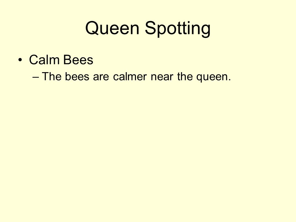 Queen Spotting Calm Bees –The bees are calmer near the queen.