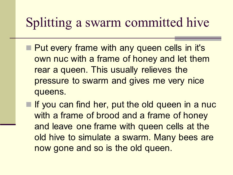 Splitting a swarm committed hive Put every frame with any queen cells in it's own nuc with a frame of honey and let them rear a queen. This usually re
