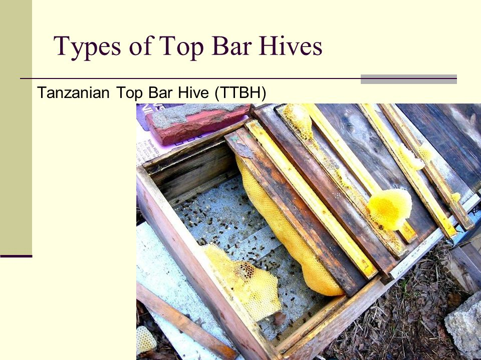 FAQs Question: What is different about the management of a top bar hive?