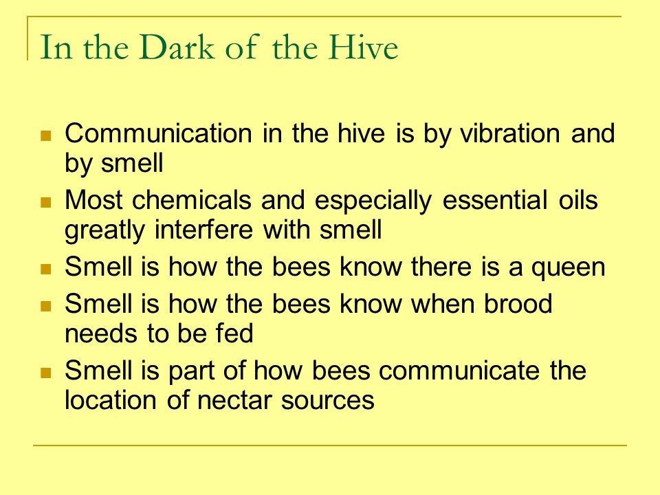 In the Dark of the Hive Communication in the hive is by vibration and by smell Most chemicals and especially essential oils greatly interfere with sme