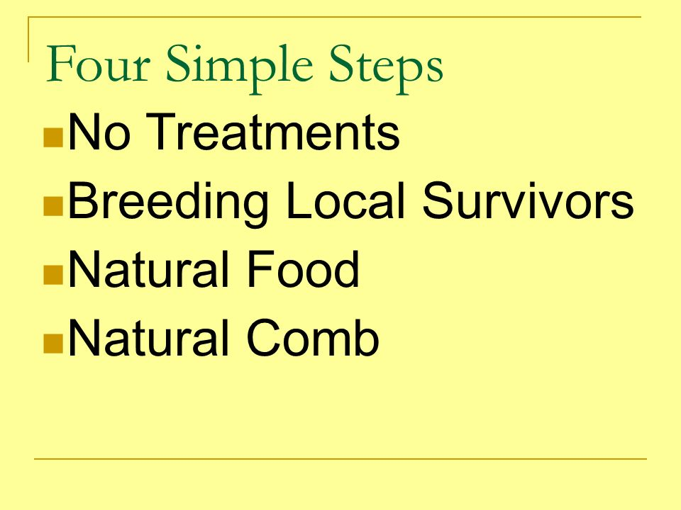 Four Simple Steps No Treatments Breeding Local Survivors Natural Food Natural Comb