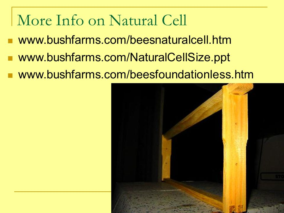 More Info on Natural Cell www.bushfarms.com/beesnaturalcell.htm www.bushfarms.com/NaturalCellSize.ppt www.bushfarms.com/beesfoundationless.htm