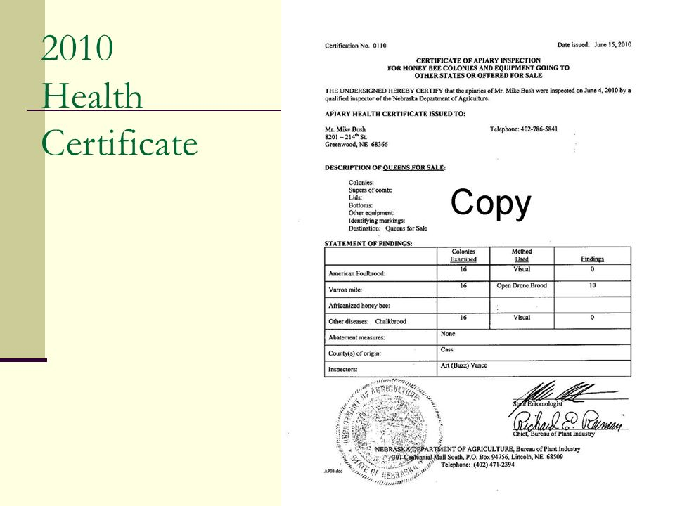 2010 Health Certificate