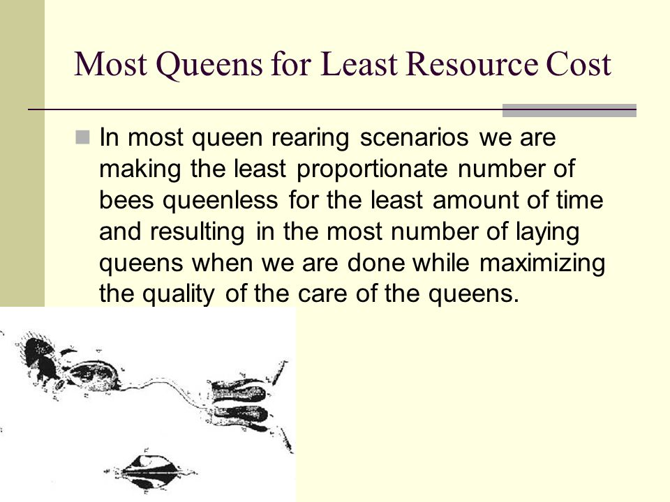 Most Queens for Least Resource Cost In most queen rearing scenarios we are making the least proportionate number of bees queenless for the least amoun