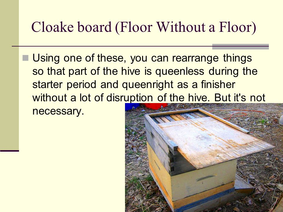 Cloake board (Floor Without a Floor) Using one of these, you can rearrange things so that part of the hive is queenless during the starter period and
