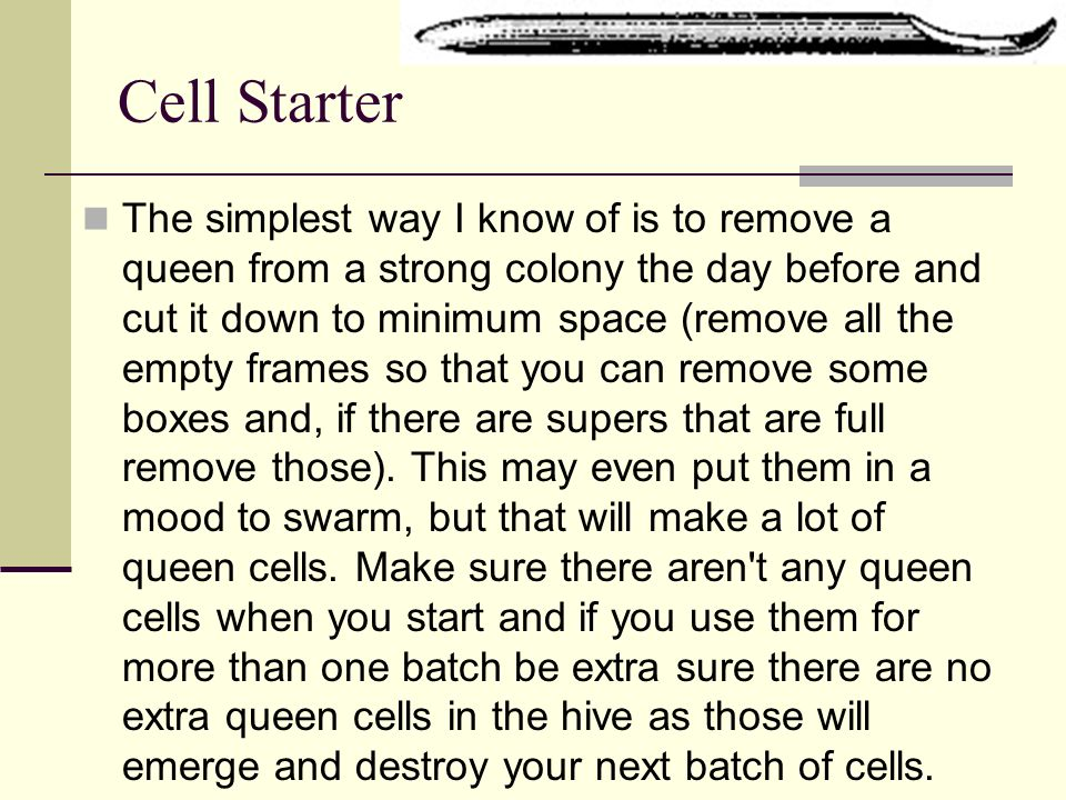 Cell Starter The simplest way I know of is to remove a queen from a strong colony the day before and cut it down to minimum space (remove all the empt