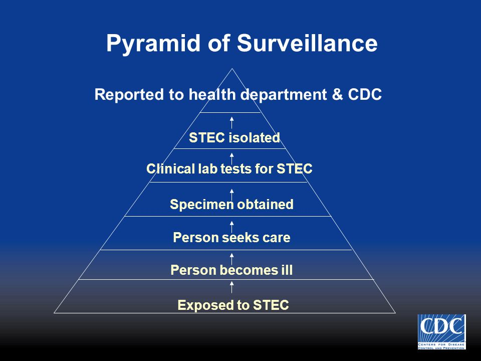 Pyramid of Surveillance Exposed to STEC Person becomes ill Person seeks care Specimen obtained Clinical lab tests for STEC STEC isolated Reported to h