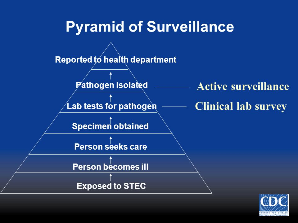 Pyramid of Surveillance Exposed to STEC Person becomes ill Person seeks care Specimen obtained Lab tests for pathogen Pathogen isolated Reported to he