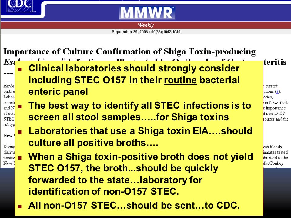Clinical laboratories should strongly consider including STEC O157 in their routine bacterial enteric panel The best way to identify all STEC infectio