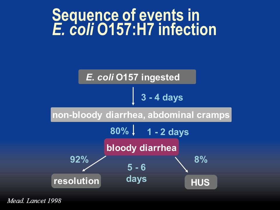Sequence of events in E. coli O157:H7 infection E. coli O157 ingested 3 - 4 days non-bloody diarrhea, abdominal cramps 5 - 6 days resolution 92%8% HUS
