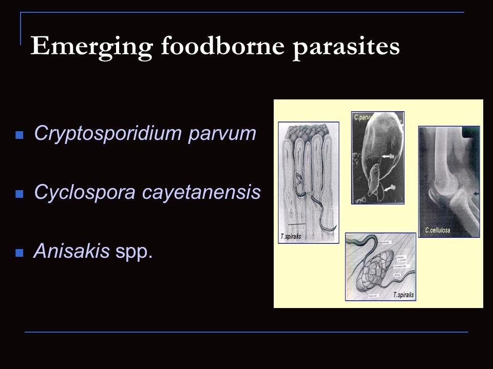 Emerging foodborne parasites Cryptosporidium parvum Cyclospora cayetanensis Anisakis spp.