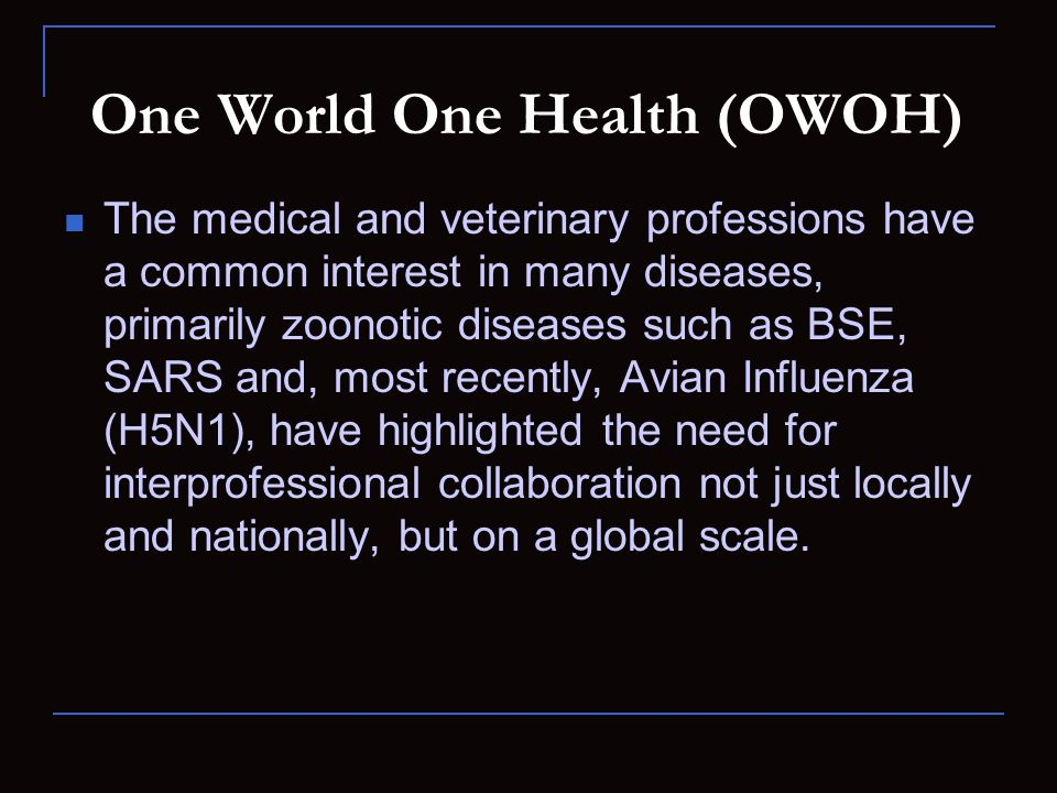 One World One Health (OWOH) The medical and veterinary professions have a common interest in many diseases, primarily zoonotic diseases such as BSE, S