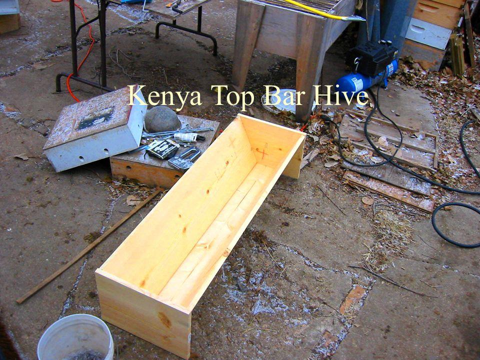 Kenya Top Bar Hive