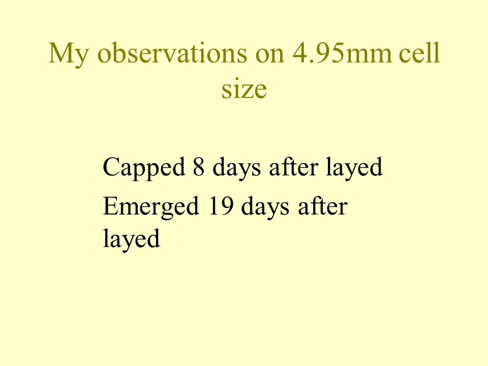 My observations on 4.95mm cell size Capped 8 days after layed Emerged 19 days after layed