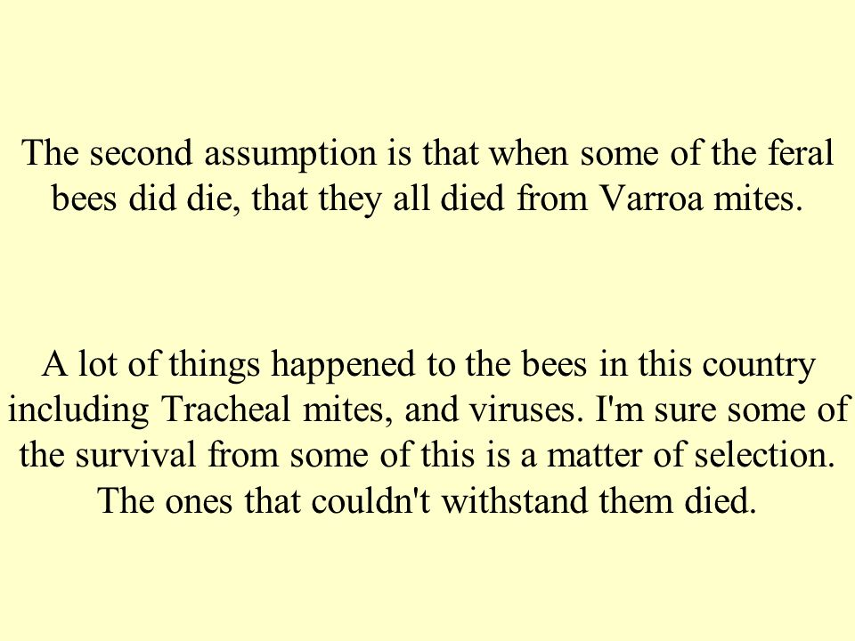 The second assumption is that when some of the feral bees did die, that they all died from Varroa mites. A lot of things happened to the bees in this
