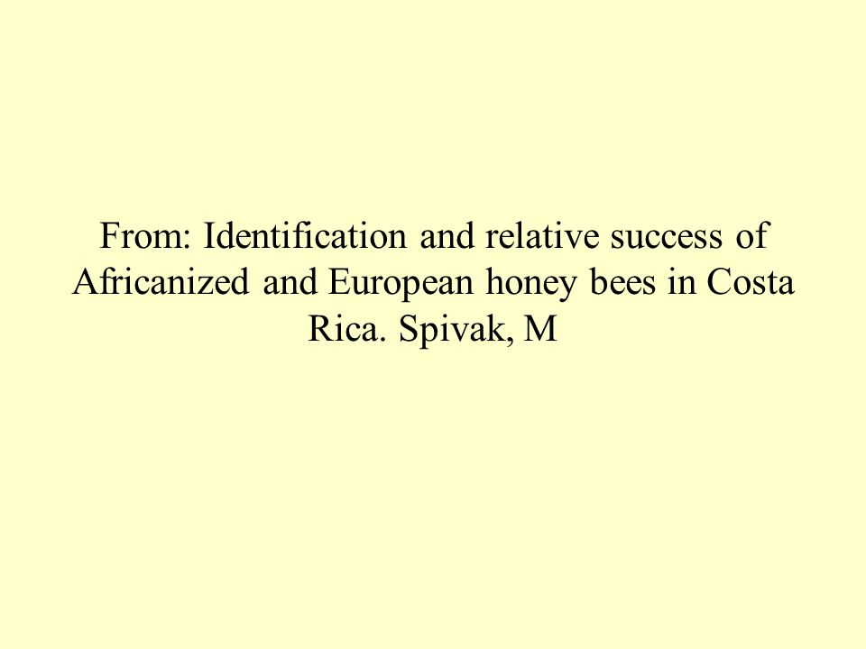 From: Identification and relative success of Africanized and European honey bees in Costa Rica. Spivak, M