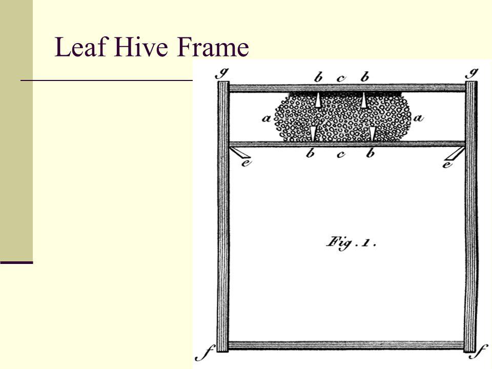 Leaf Hive Frame