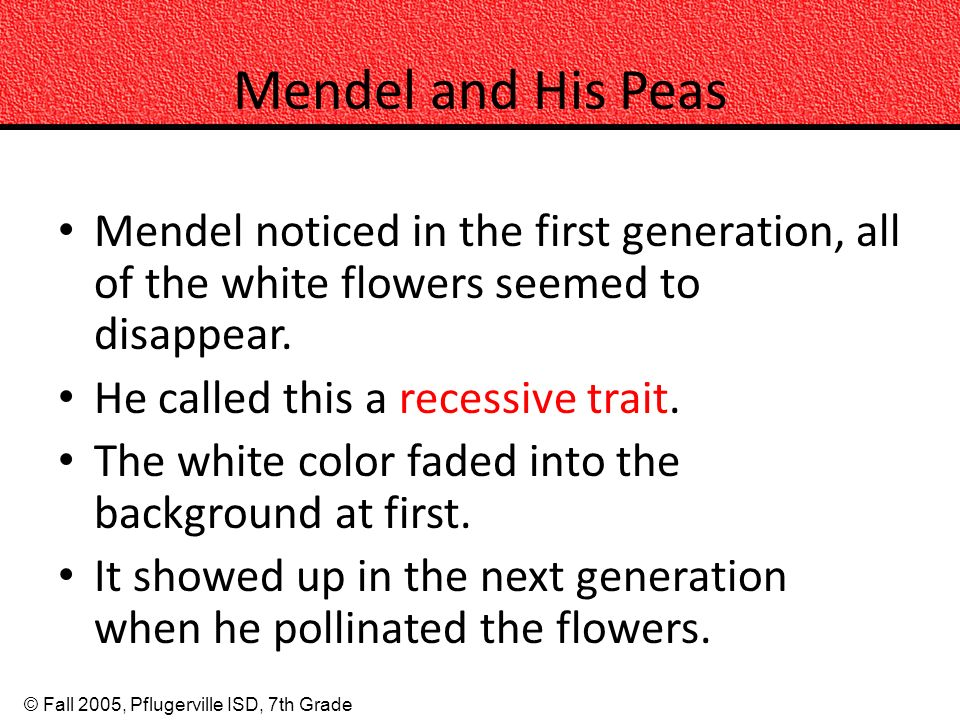 © Fall 2005, Pflugerville ISD, 7th Grade Mendel and His Peas Mendel noticed in the first generation, all of the white flowers seemed to disappear.