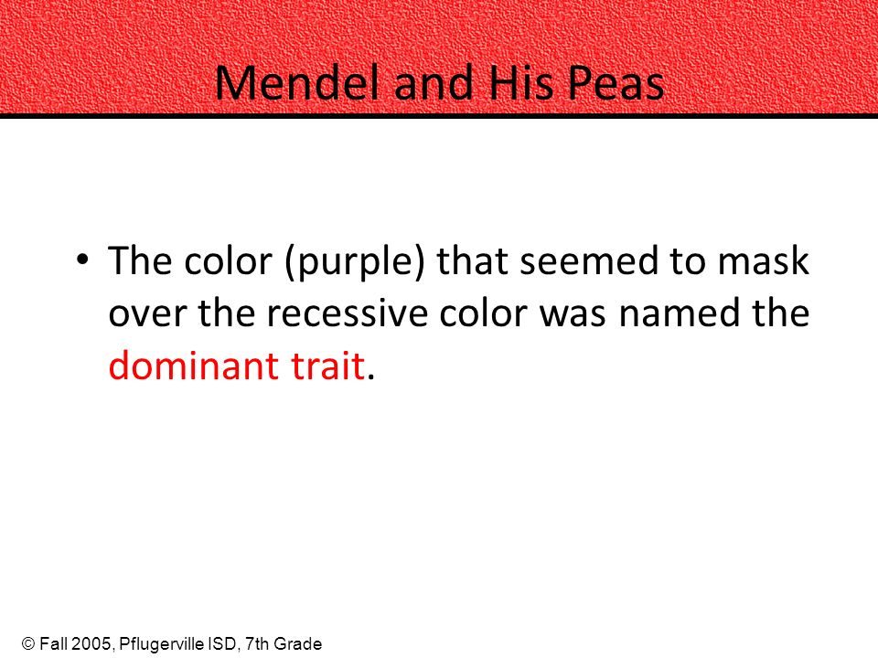 © Fall 2005, Pflugerville ISD, 7th Grade Mendel and His Peas The color (purple) that seemed to mask over the recessive color was named the dominant tr