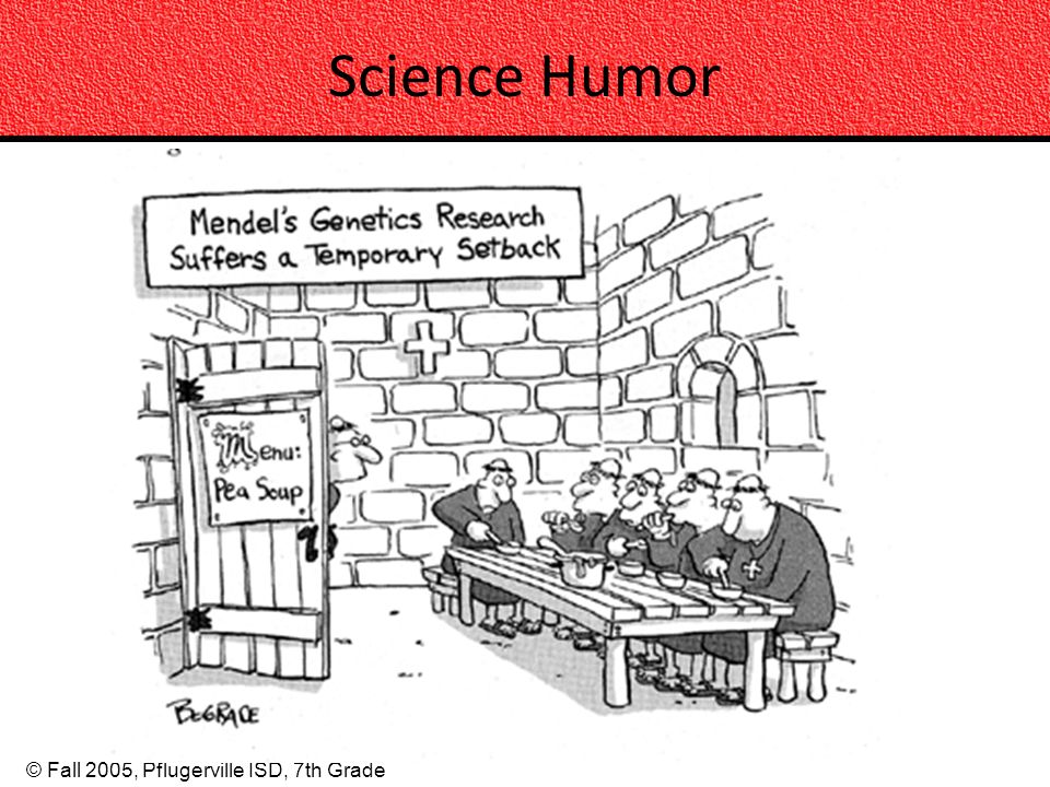 © Fall 2005, Pflugerville ISD, 7th Grade Science Humor