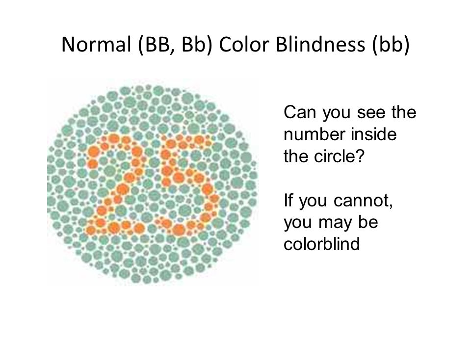 Normal (BB, Bb) Color Blindness (bb) Can you see the number inside the circle? If you cannot, you may be colorblind